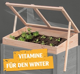 Vitamine für den Winter